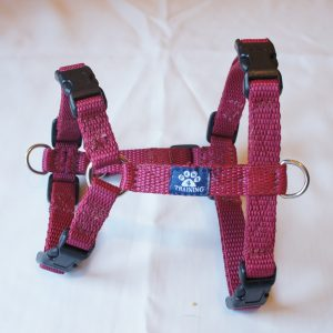 Extra Small Harness (polypropylene webbing)