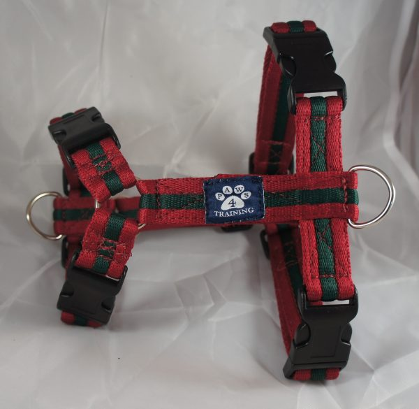 Maroon Forest Airweb Harness