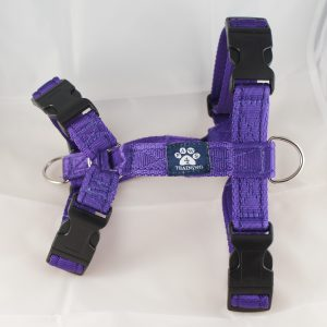 Large Harness (cushion webbing)