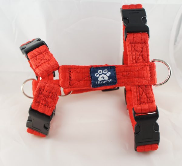 Red Airweb Harness