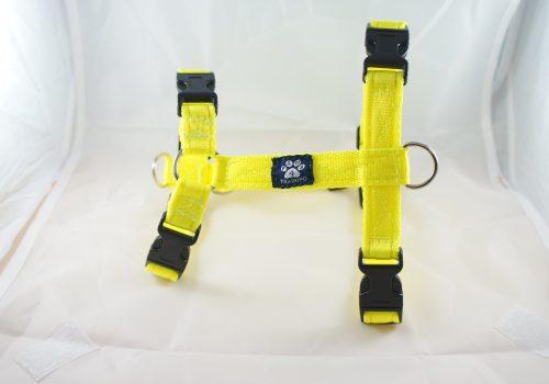 Fluorescent Yellow Harness