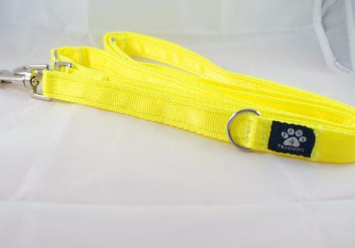 Fluorescent Yellow Training Lead