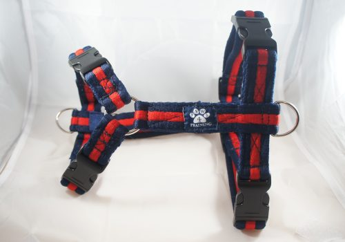 Navy Red Airweb Harness