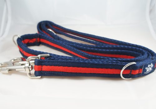 Navy Red Airweb Training Lead